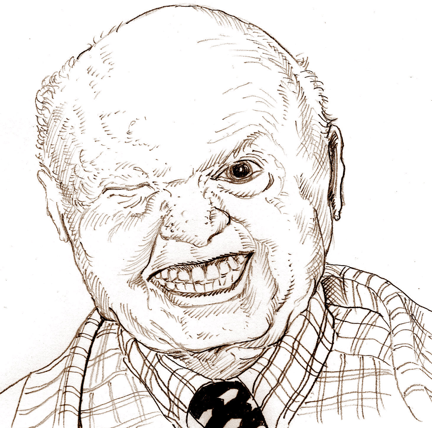 america the not so beautiful essay by andy rooney