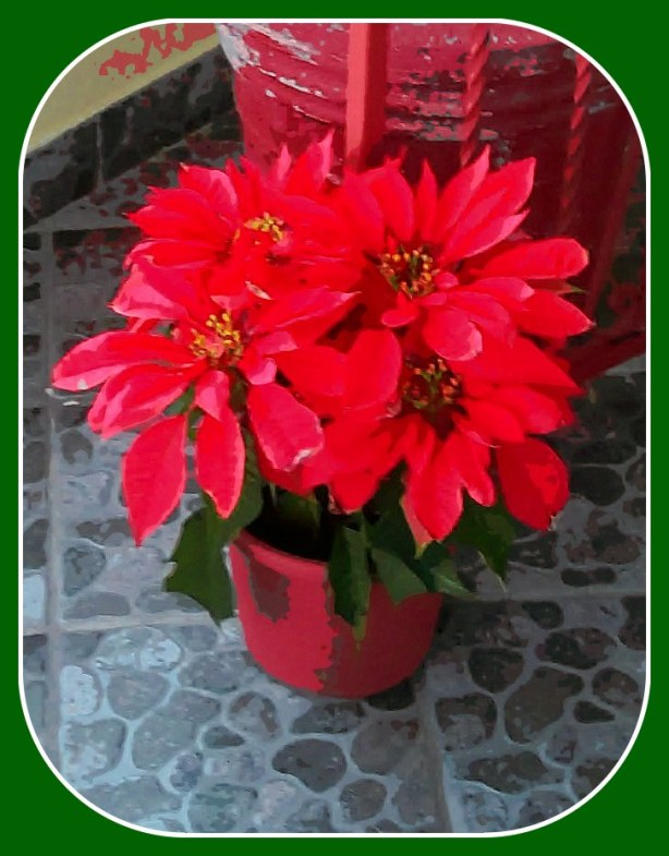 La flora de la season