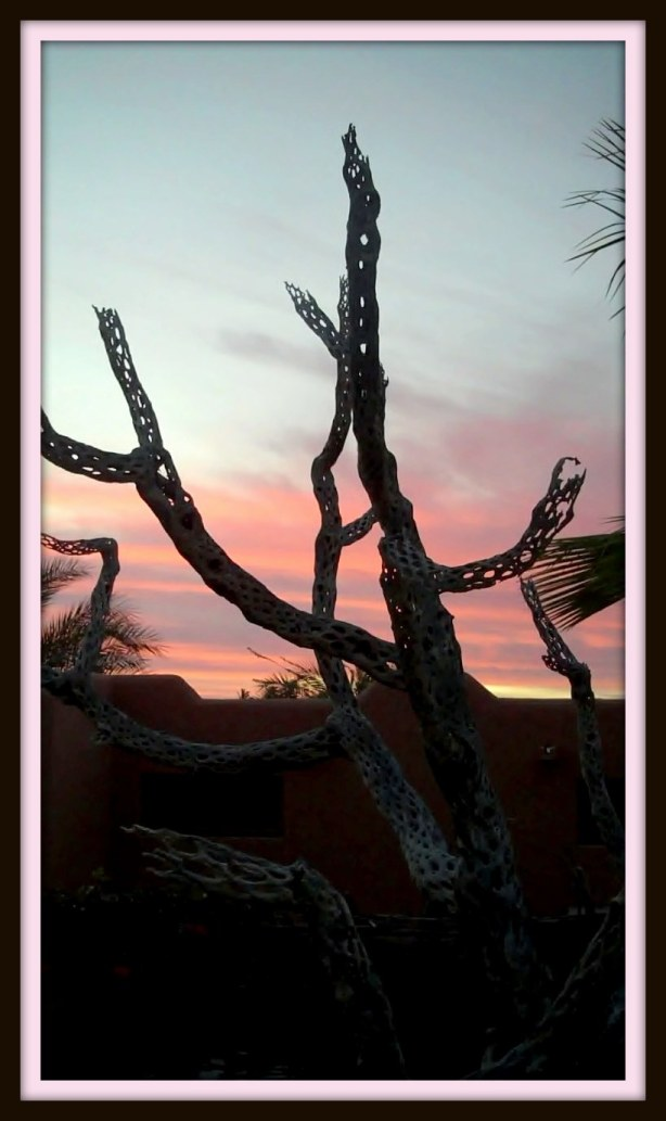 Dead tree at sunrise.