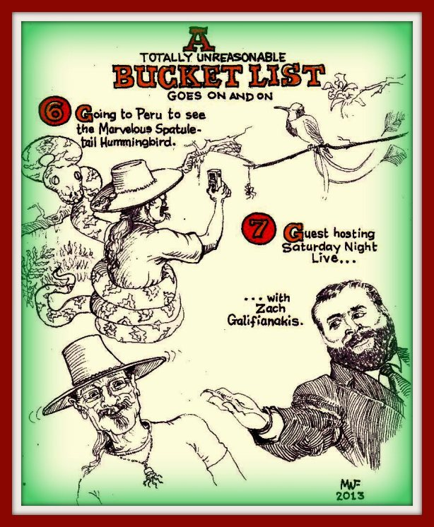 bucketrollson